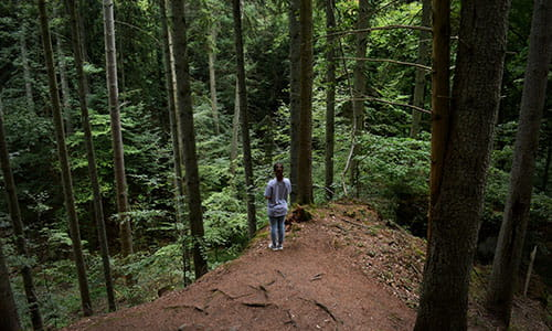 woman-hiking-mullerthal-trail-in-luxembourg.jpg
