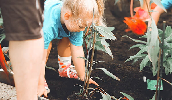 young-mission-volunteer-helping-plant-a-community-garden.jpg